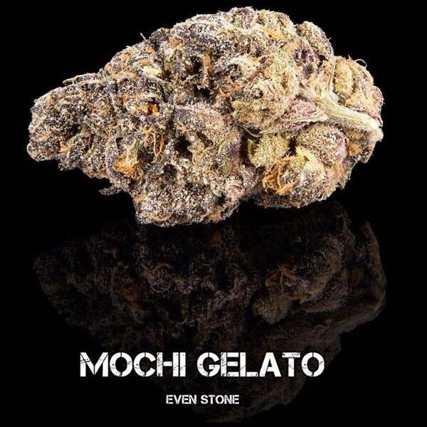 Mochi Gelato